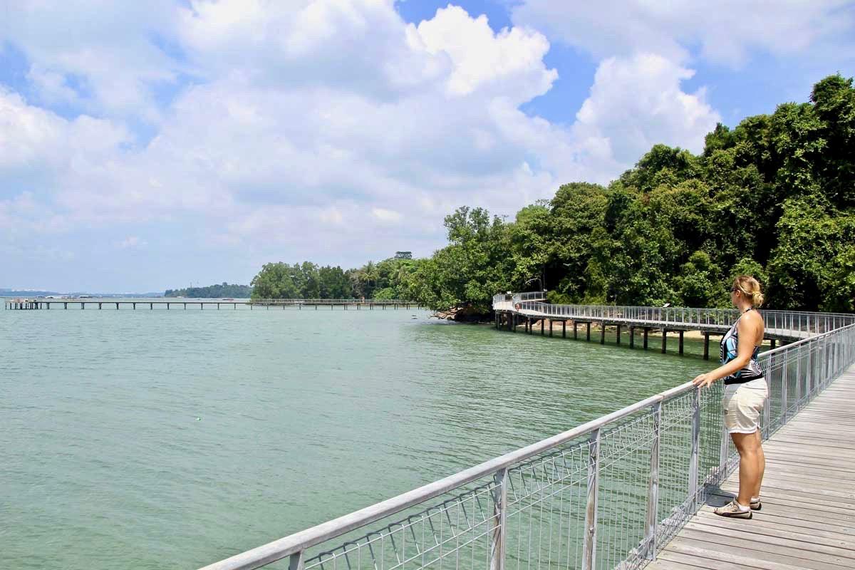 Elo boardwalk Pulau Ubin Singapour