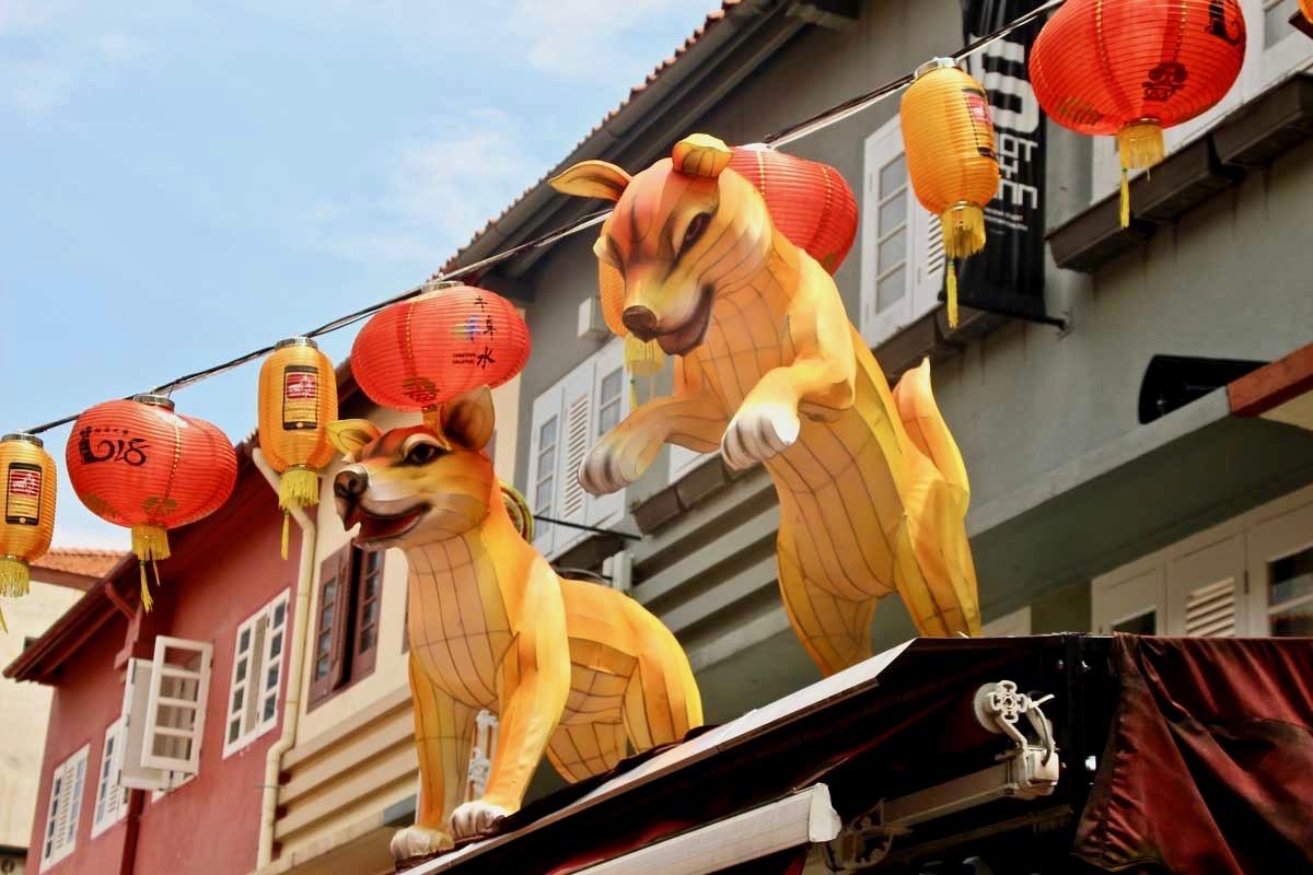 Lanterne chien Chinatown Singapour