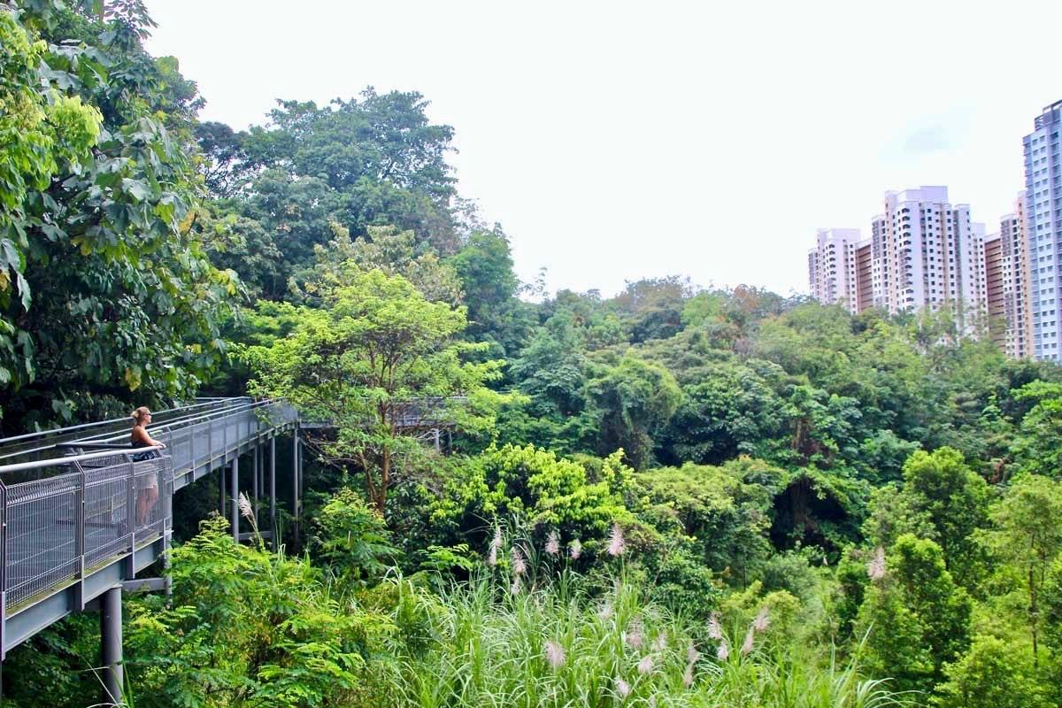 Passerelles urbaines Singapour