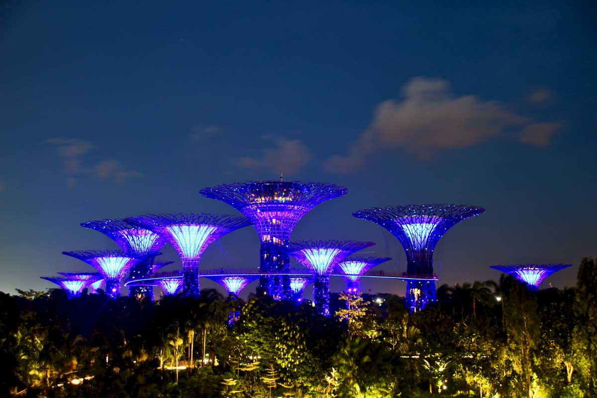 Spectacle Rhapsody Show Singapour Gardens by the bay