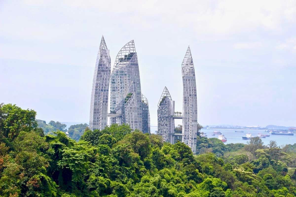 Vue depuis le pont Henderson Waves Singapour