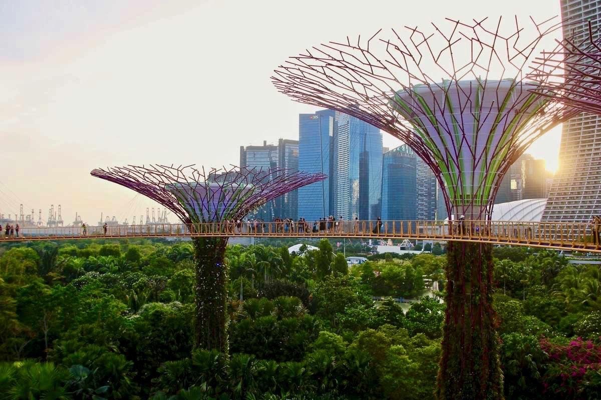 coucher de soleil passerelle SkyWay Singapour