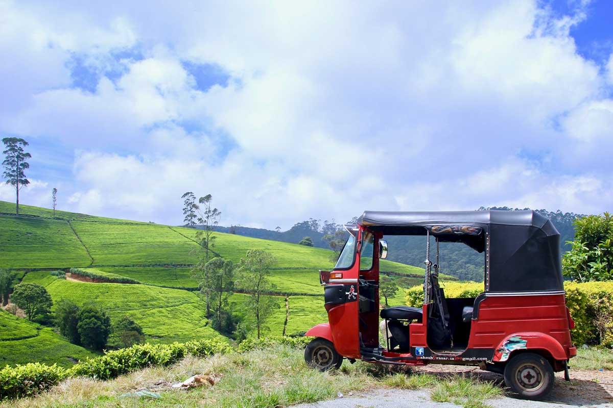 plantations thé sri lanka tuk tuk