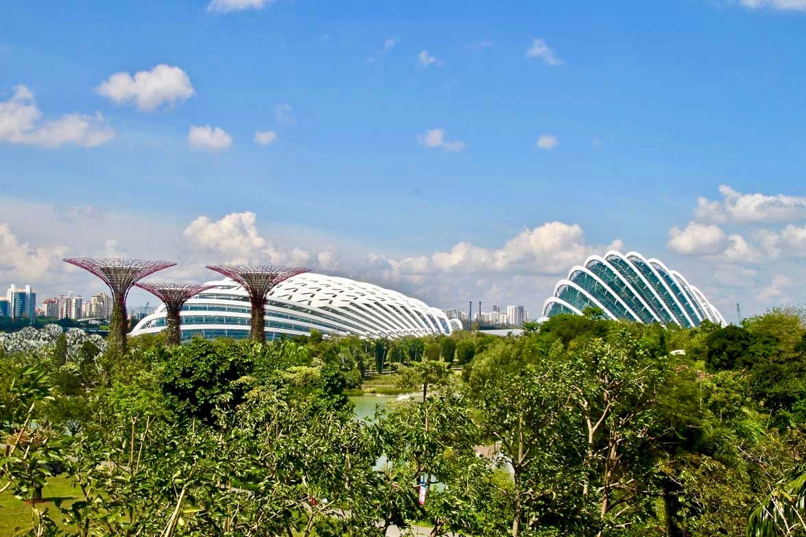 vue globale Gardens by the Bay Singapour