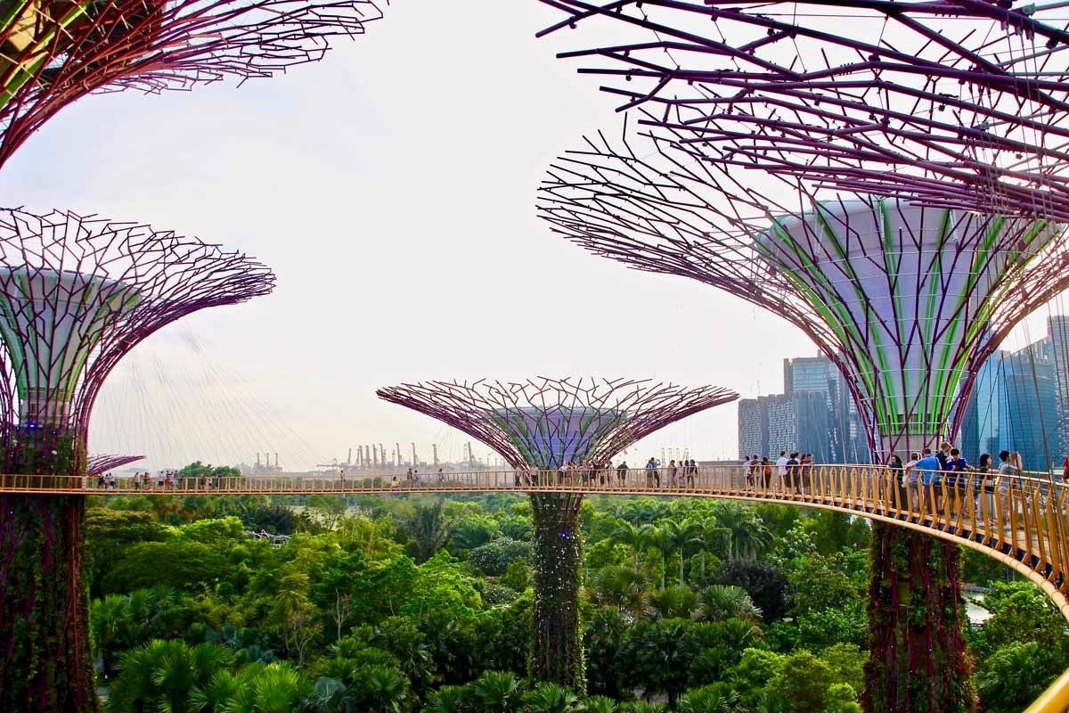 vue passerelle SkyWay Singapour