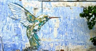Hummingbird Street Art Ipoh