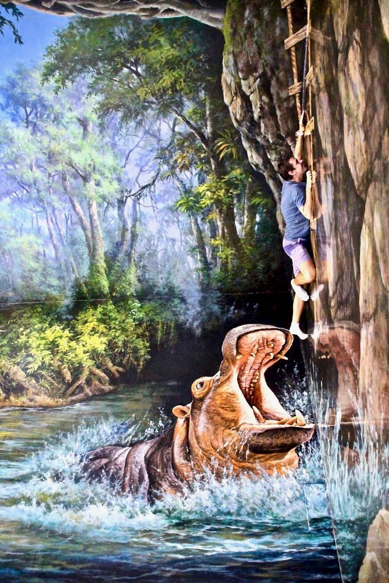 Tom Hippo Langkawi 3D