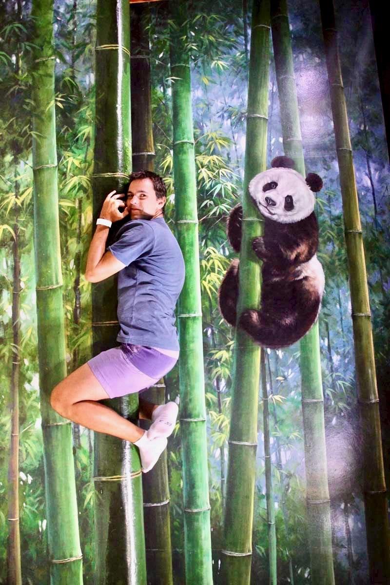 Tom panda 3D