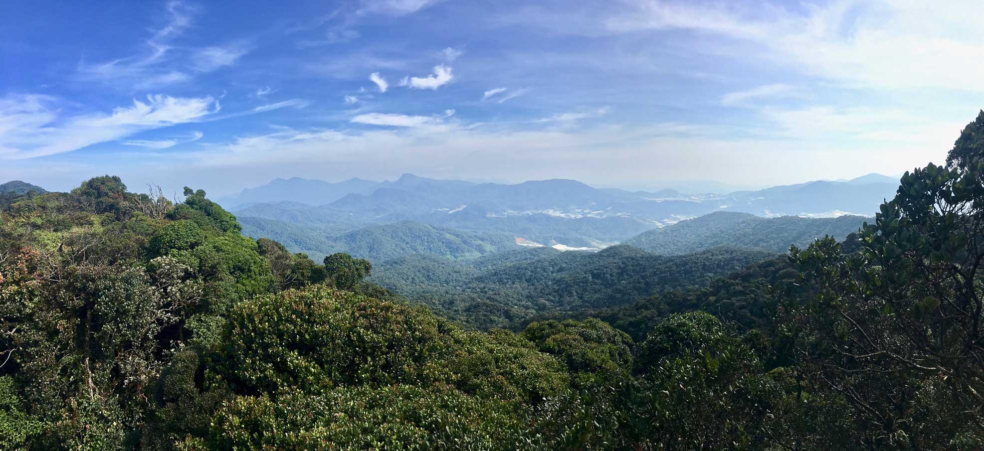 panorama cameron highlands malaisie