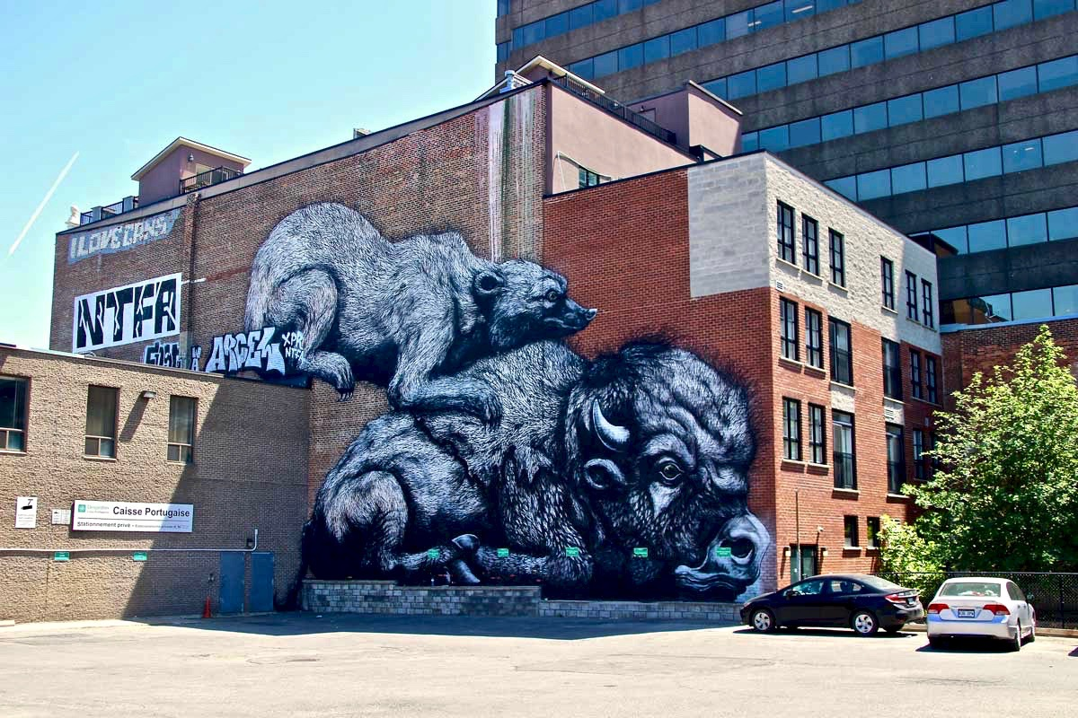 Roa Ours Bison Street Art