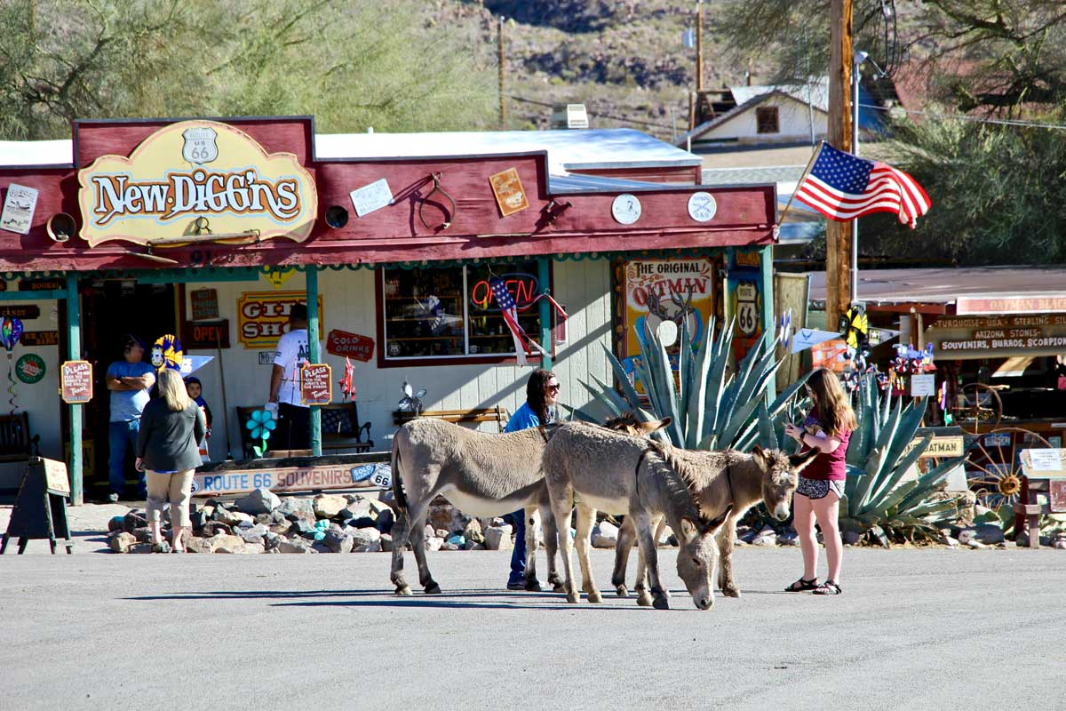 anes Oatman route 66