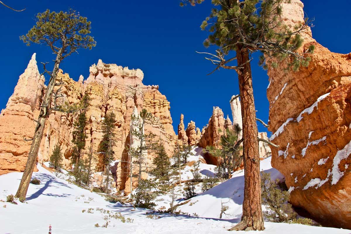 randonnée bryce canyon hiver