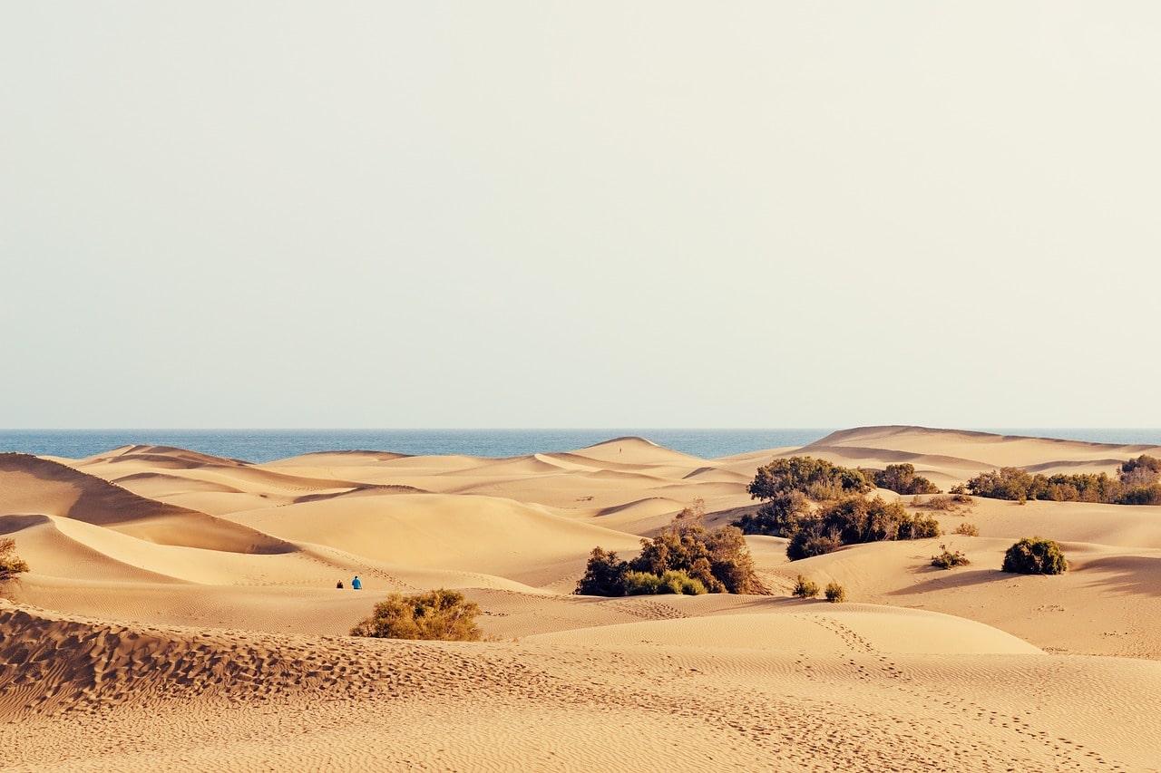 dunes Maspalomas grande canarie
