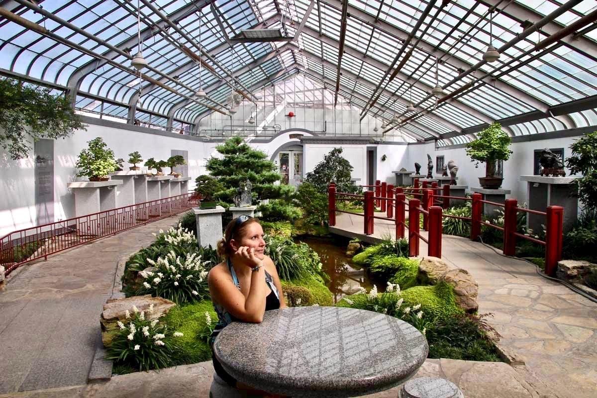 Elo Serre Jardin Botanique Montréal