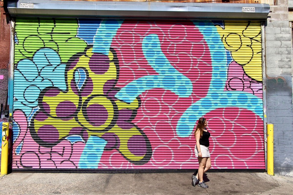 Street Art Brooklyn Art Urbain Mural Elo New York