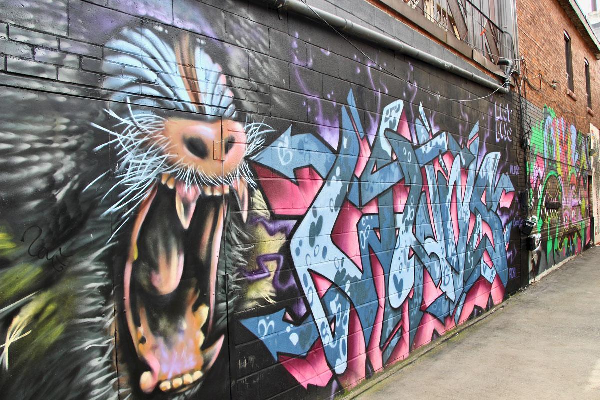 Street Art Kensington Market