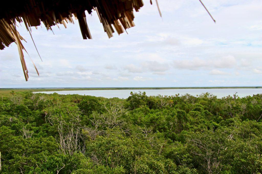 Vue tour observation réserve Sian Ka'an Tulum Mexique