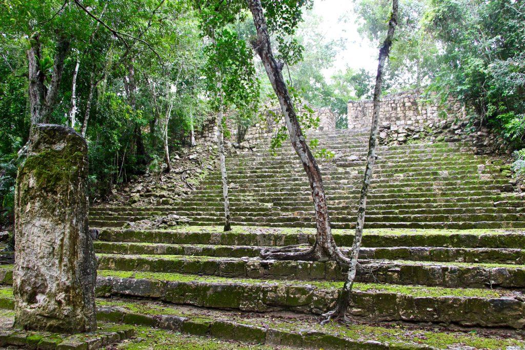 À la découverte de Calakmul, la cité Maya perdue au milieu de la jungle